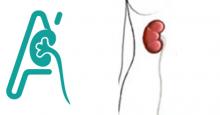 Νεφρουρητηρεκτομή